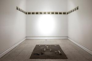 Ichor-Installation 01